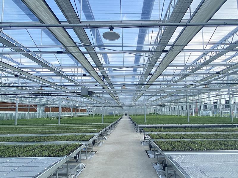 1glass greenhouse-axgreenhouse (6)