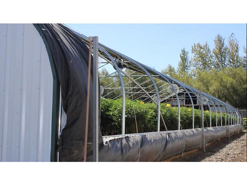 Full Roll Film Ventilation Light Deprivation Gothic Type Greenhouse -PBSG005