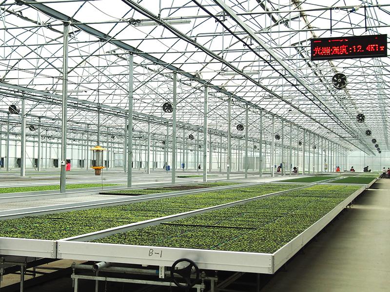 Large-span Nursery Greenhouse, Automatic Irrigation/Ventilation/Lighting/Temperature Control-PMG004
