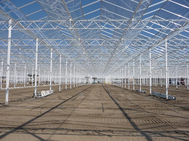 Large area engineered greenhouse venlo glass greenhouse-PMV021