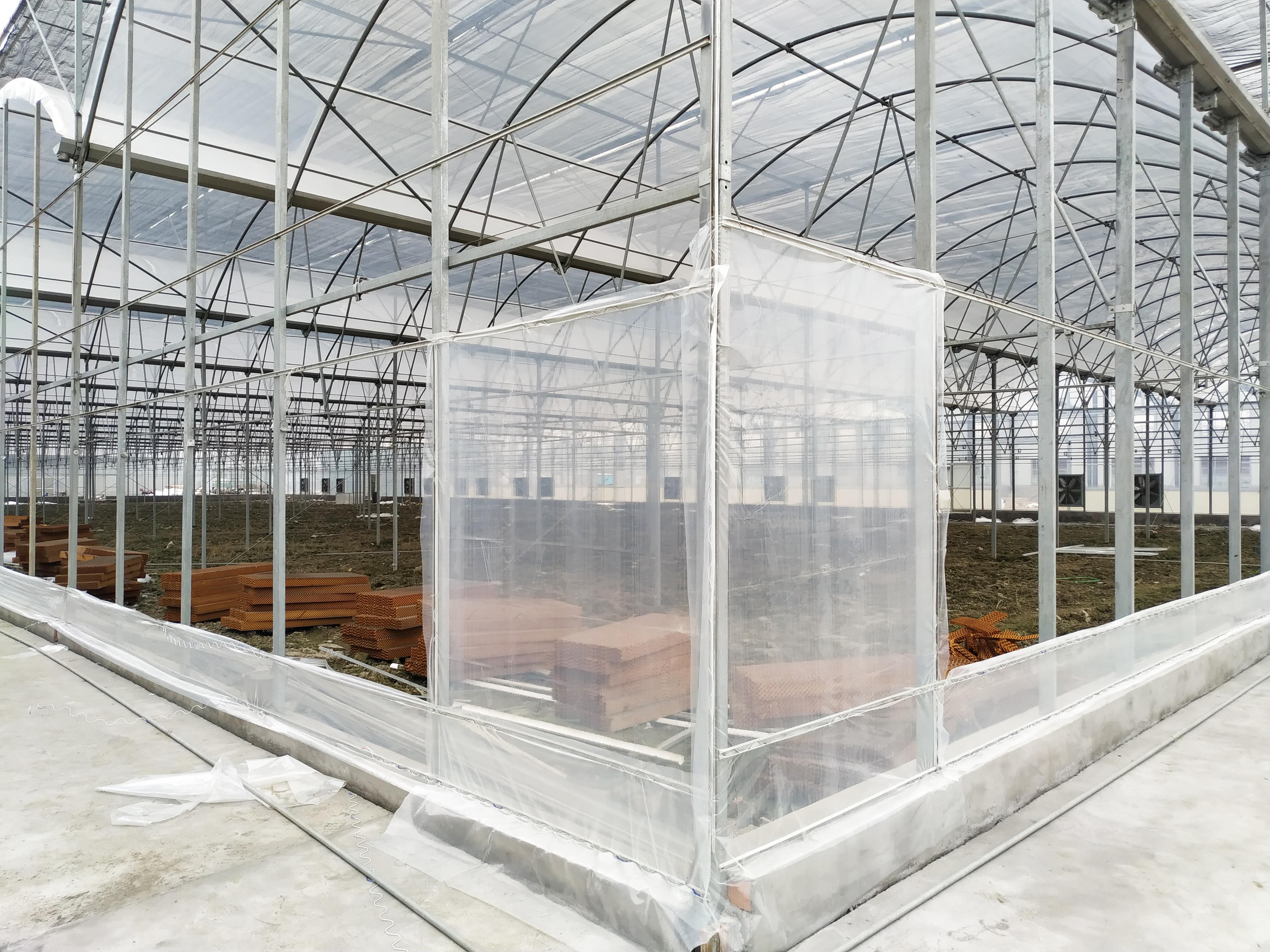 Multi-span Greenhouse (3)