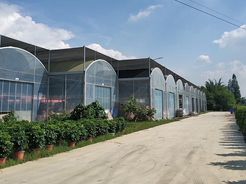 Multi-span Greenhouse-axgreenhouse 2 (5)