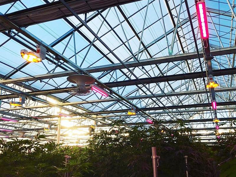 Blackout/Light Deprivation Greenhouse – Venlo Polycarbonate sheet version