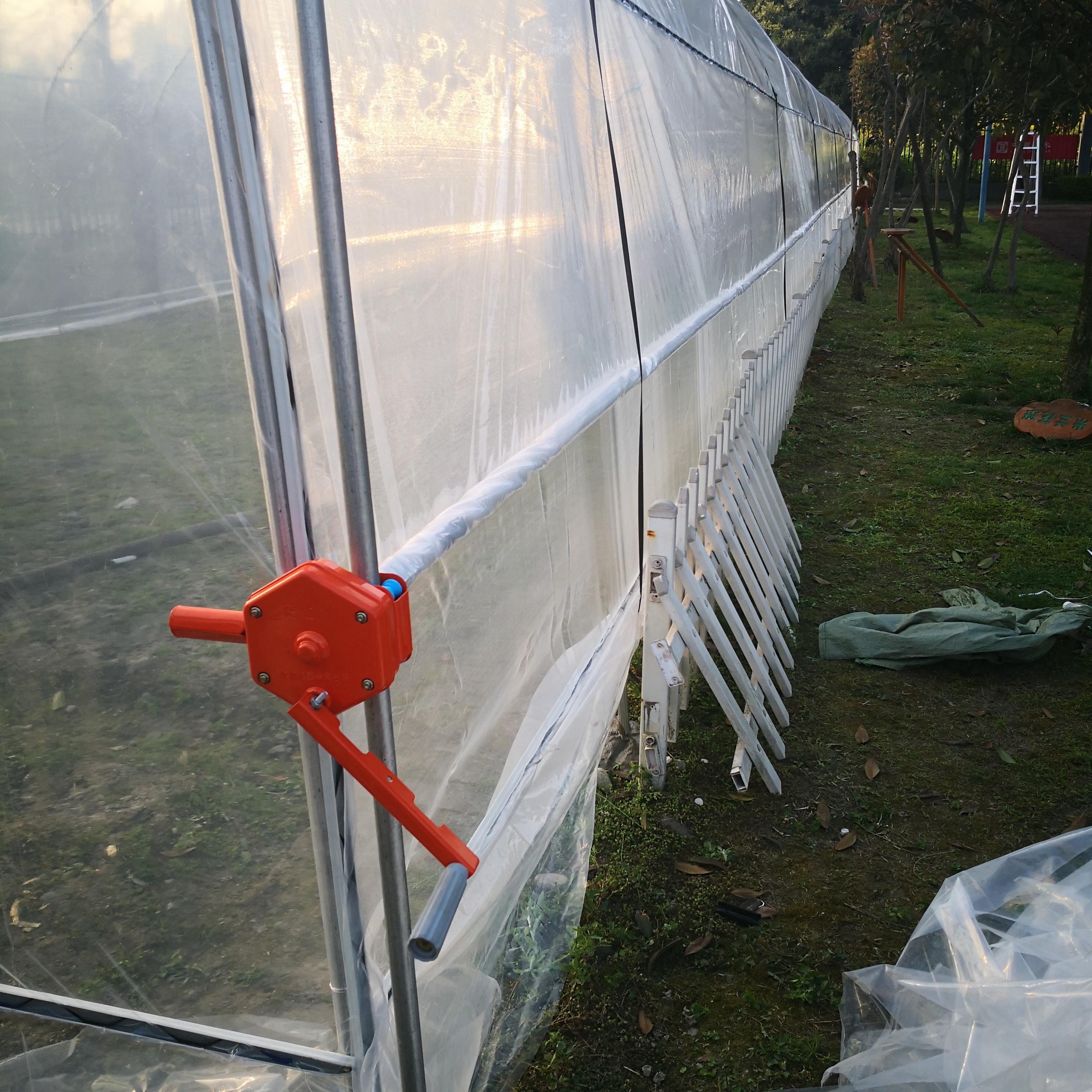 Vegetable tunnel greenhouse-axgreenhouse (47)