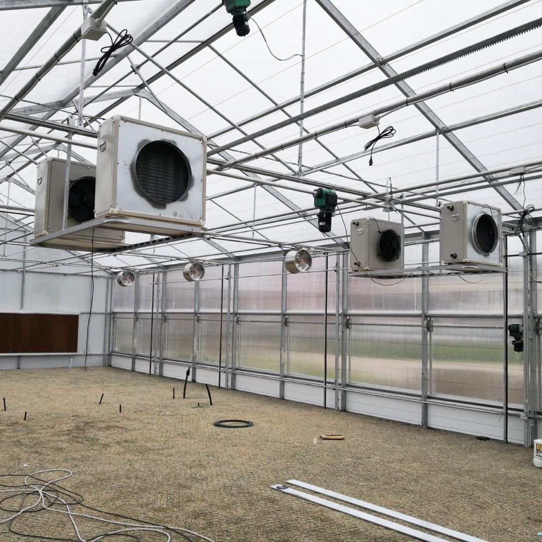 cannabis greenhouse-axgreenhouse (3)